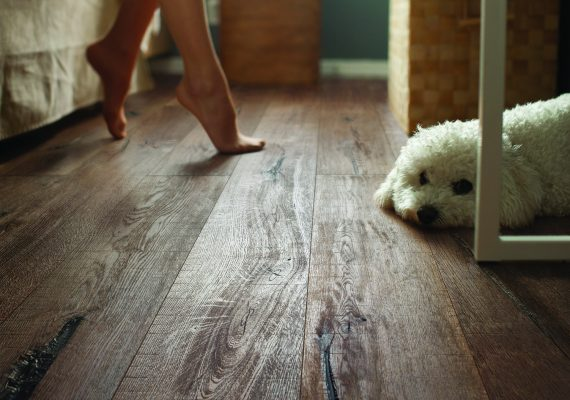 Medinės grindys, parketlentes, parketas